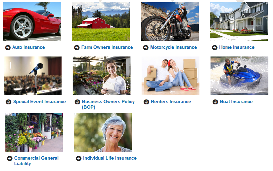 auto insurance - farm owners insurance - motorcycle insurance - home insurance - special event insurance - business owners policy BOP - Renters insurance - boat insurance - commercial general liability - individual life insurance